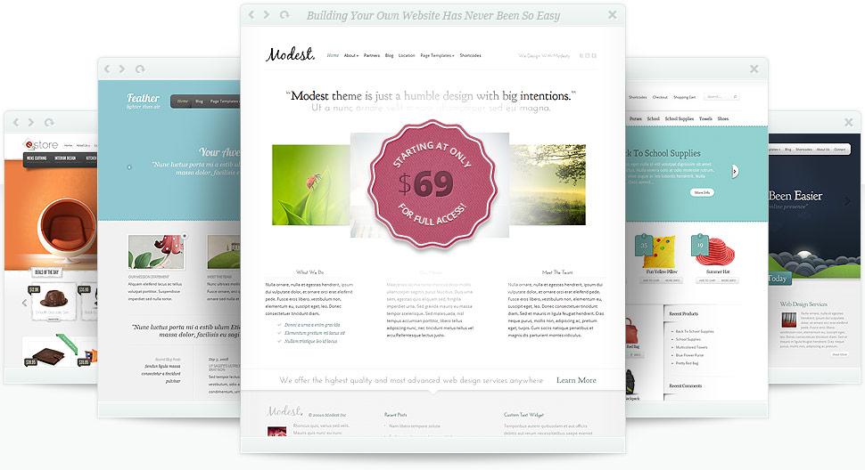 80 Plantillas WordPress Profesionales al precio de una