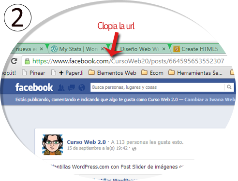 Poner un Post de FB y Google en WordPress Paso 2