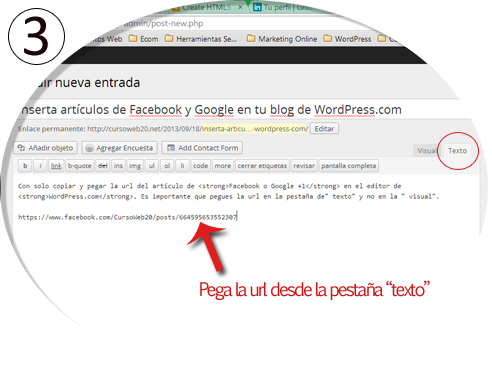 Poner un Post de FB y Google en WordPress Paso 3